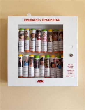 16-Unit AEK Epinephrine Cabinet