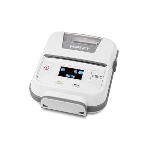 Maico® Digital Pilot Optional Printer
