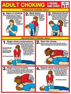 "Adult Choking Chart, Laminated 18"" x 24"""
